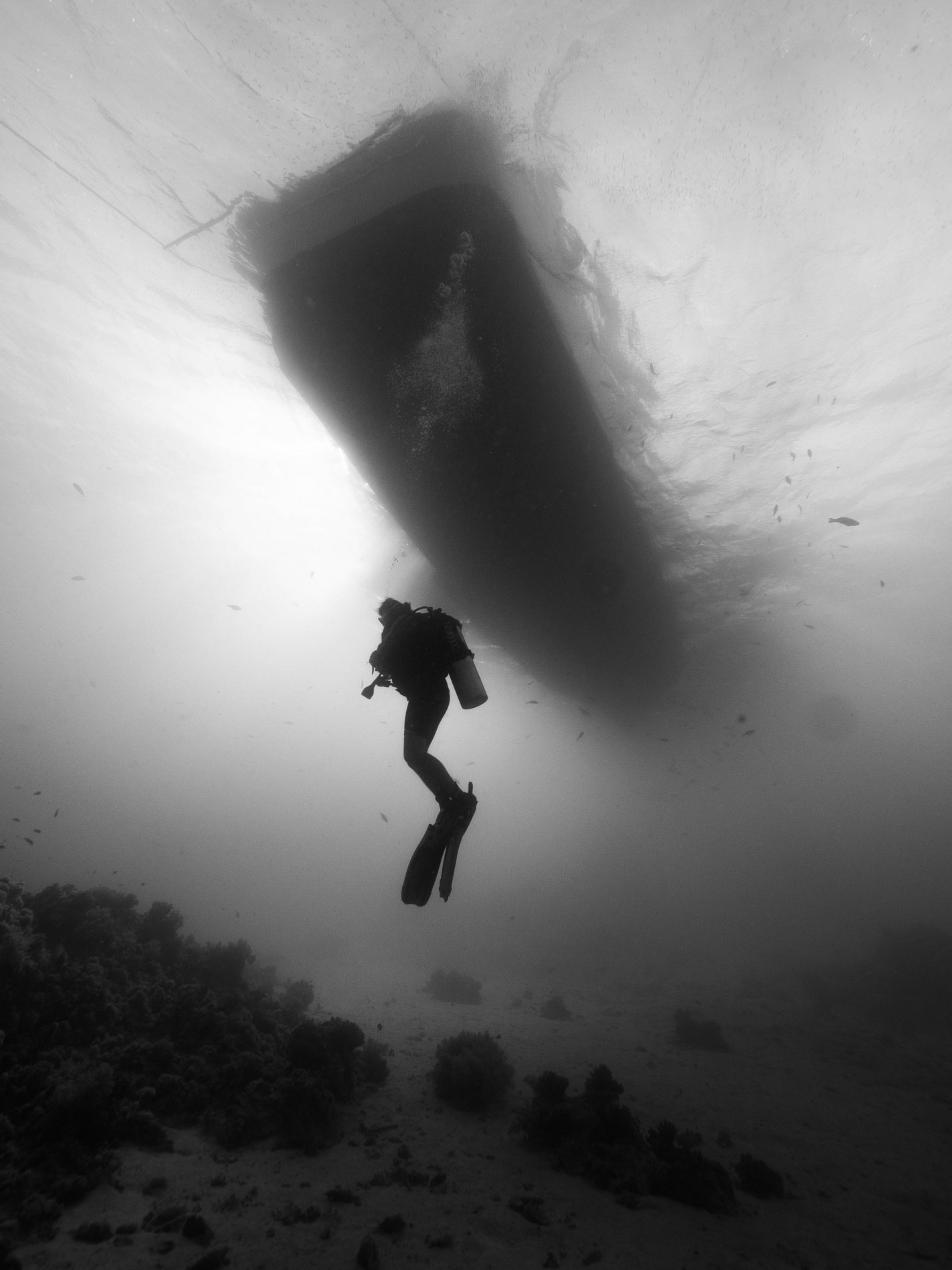 Scuba-diver-under-boat