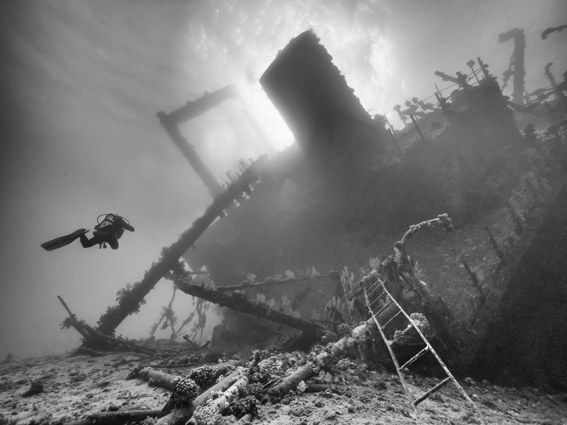 Wreck-of-the-Gianis-D-2